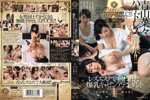 bban-001_poster.jpg