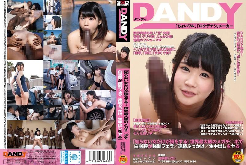 DANDY-423.jpg