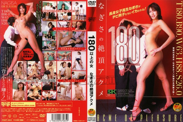 fset-065_poster.
