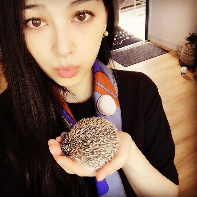 Saori-Hedgehog 26 April 2016.jpg