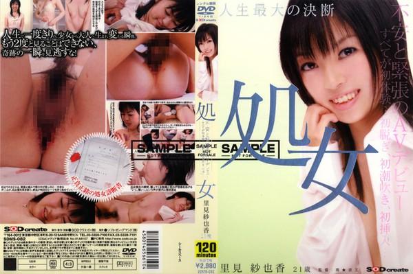sdms-082_poster.