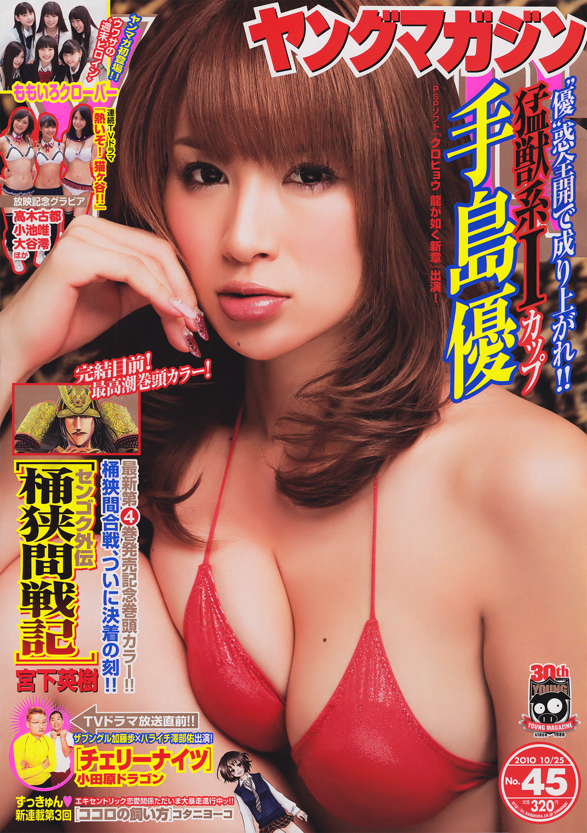 Young Magazine 2010 No.45 young 08110