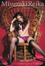 [Weekly Playboy] 2010 No.46 (Reina Mari Megumi Morisaki Yuki Kaori Tani Momoko Kai) - idols