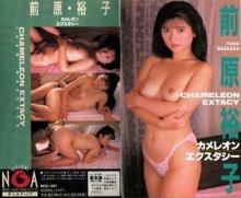 Yuko Maehara - Chameleon Ecstasy.jpg